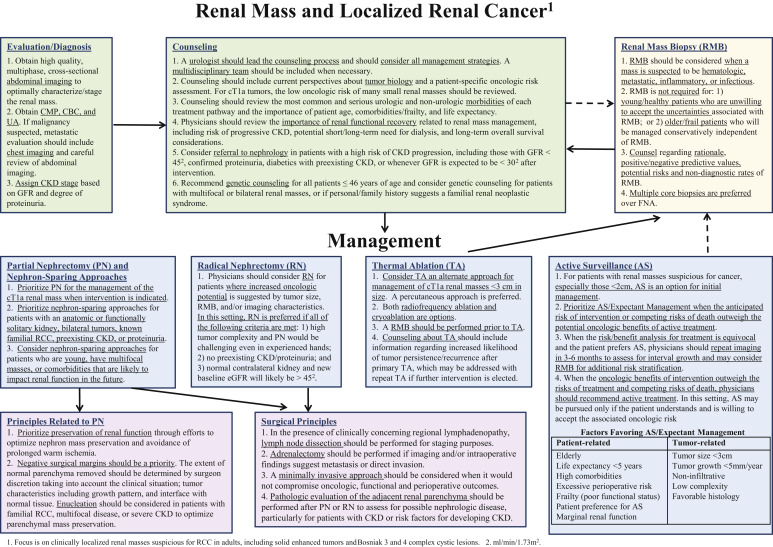 renal cancer guidelines