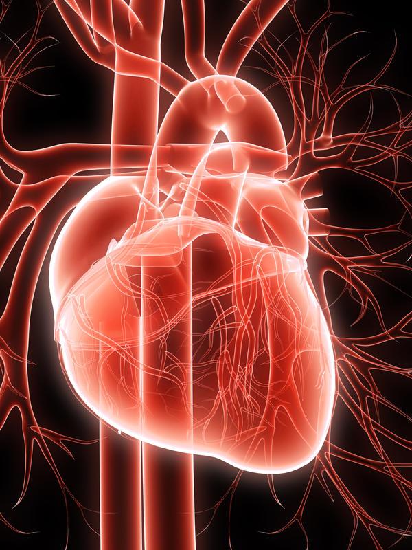 hpv virus blood donation virus papiloma humano genotipo 58