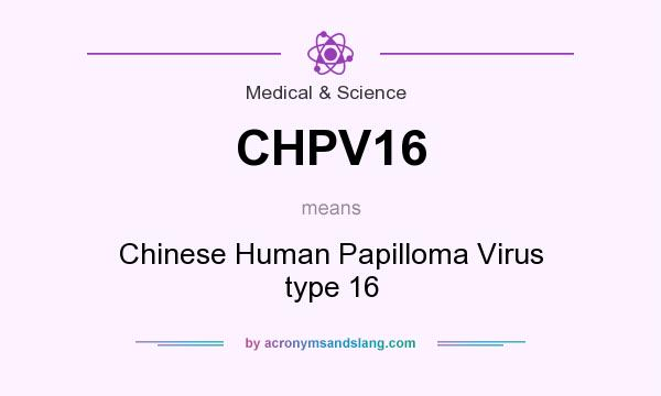 what is human papilloma virus definition