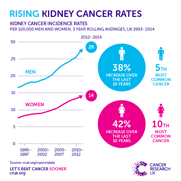 renal cancer obesity