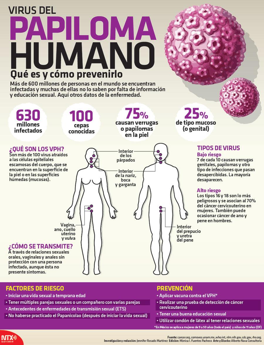 virus papiloma humano caracteristicas)