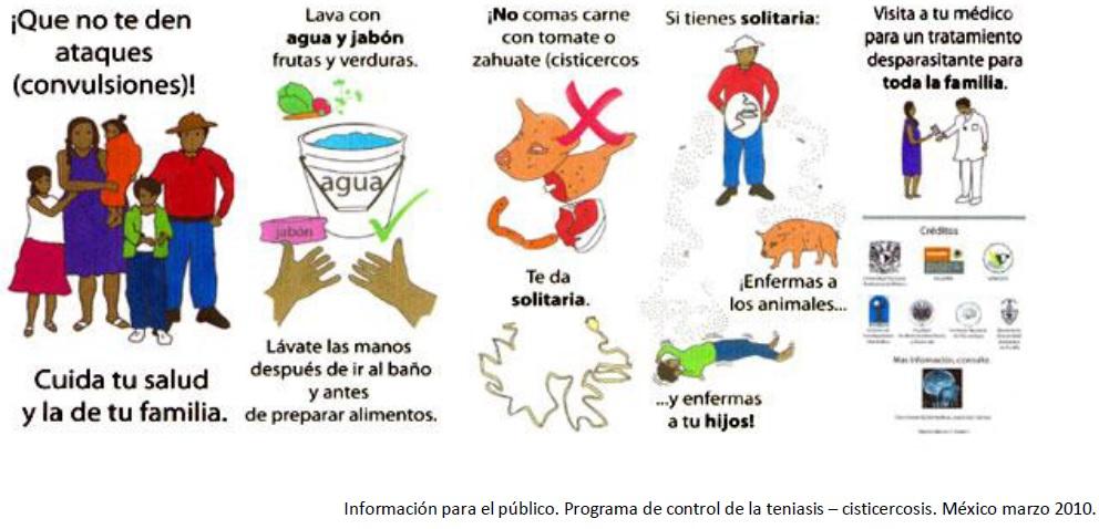 enterobius vermicularis sintomas y prevencion)