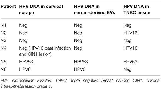 hpv 16 breast cancer)