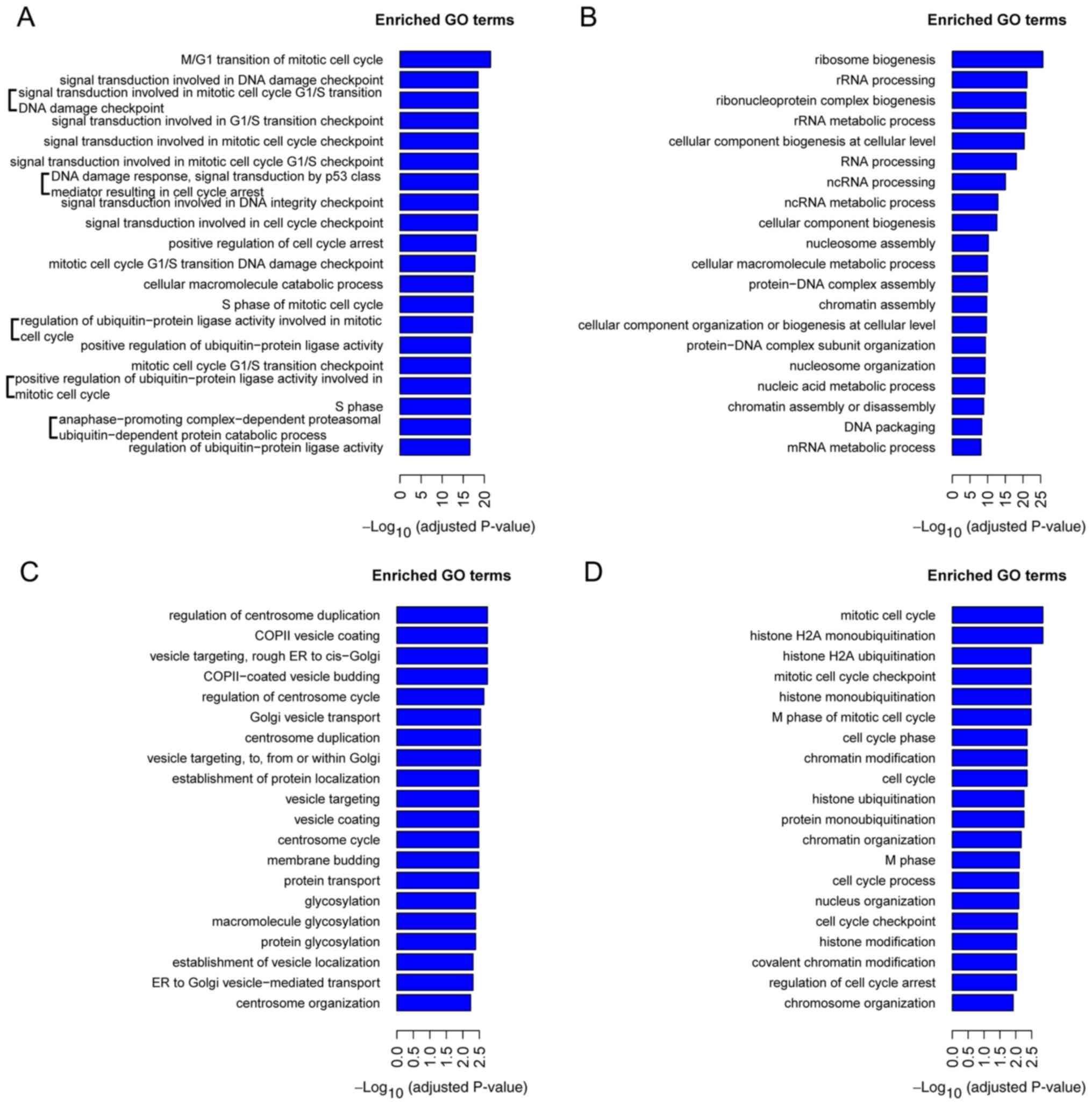 Factorii care provoacă apariţia cancerului la copii şi modul în care poate fi depistată boala
