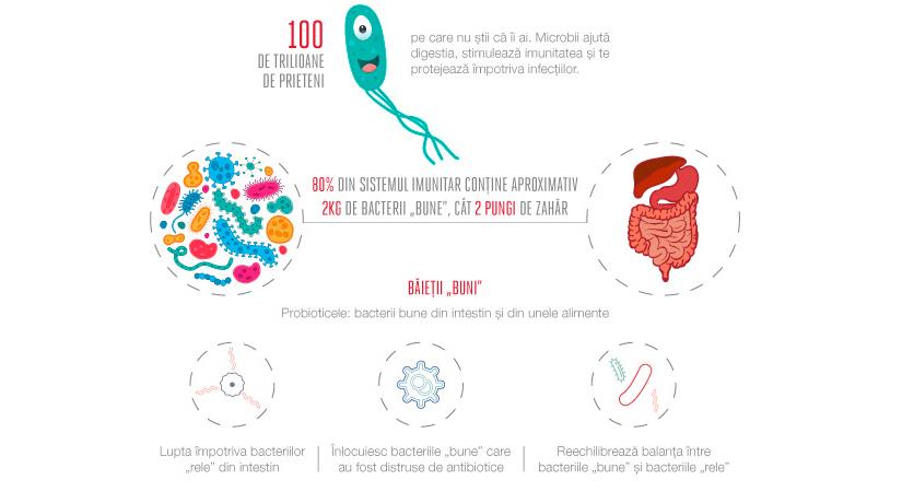 bacterii flora intestinala