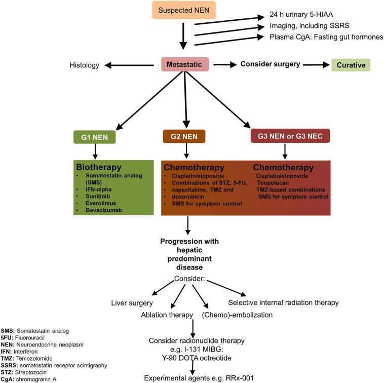 neuroendocrine cancer review