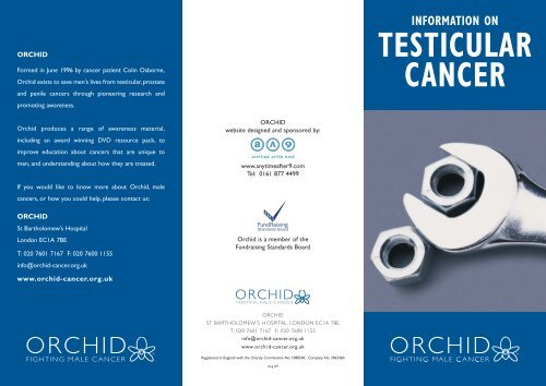 testicular cancer website)
