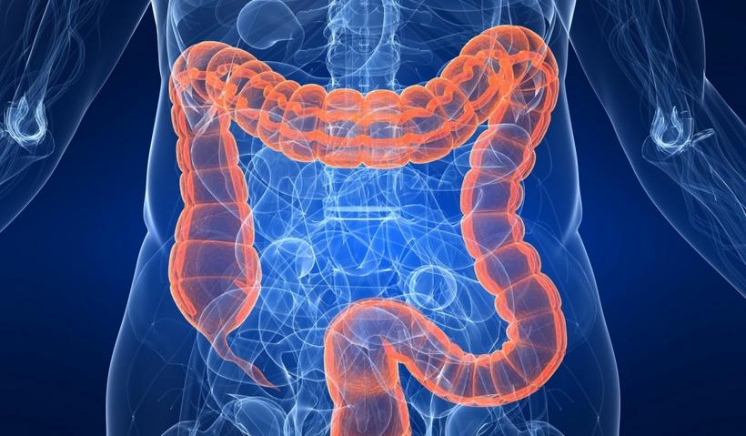 toxine colon)
