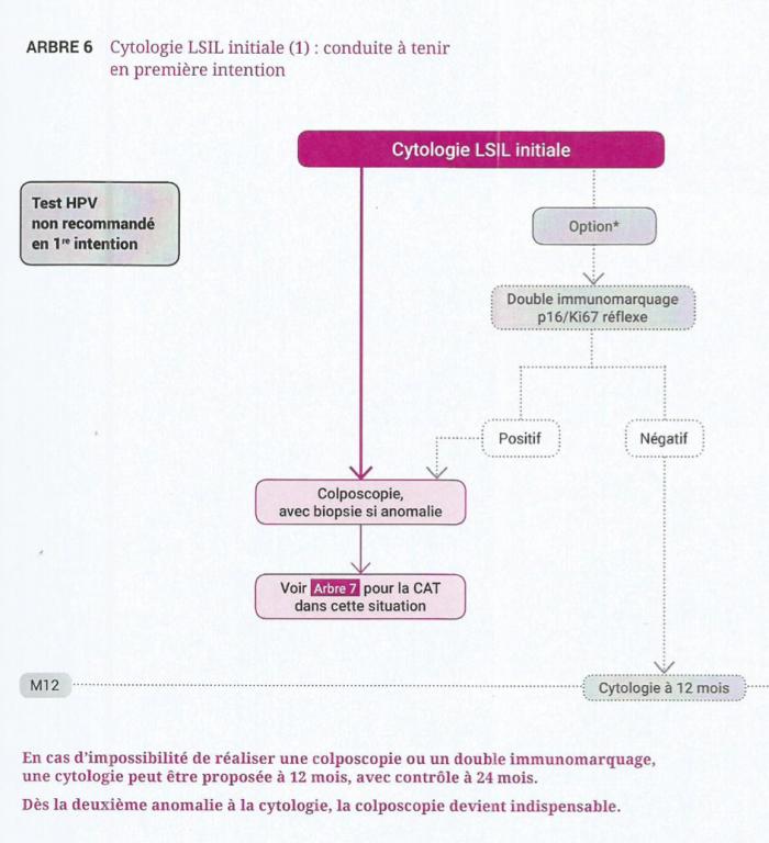 anomalie frottis papillomavirus