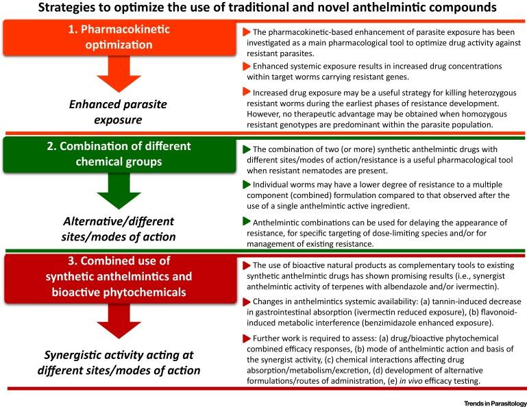 anthelmintic meaning examples papilloma virus uomo tempo di incubazione