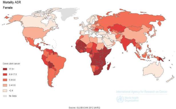 hpv cervical cancer epidemiology