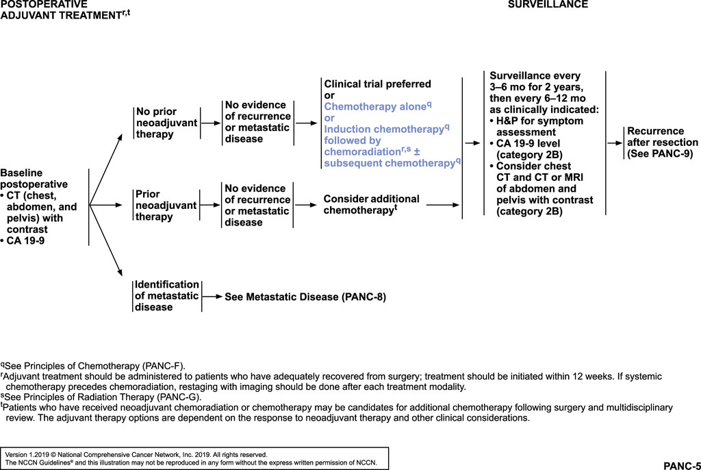 cancer pancreas guidelines)