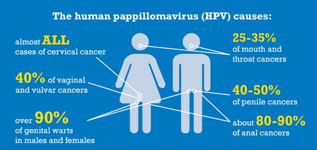 hpv virus vrouwen