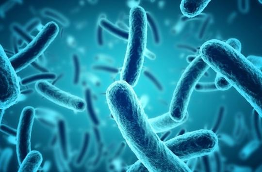 human papillomavirus sintomi hpv virus cause discharge