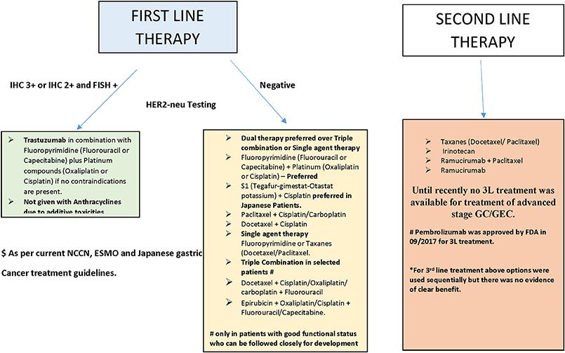 gastric cancer guidelines)