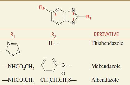 benzimidazole anthelmintic agents enterobiasis mode of transmission