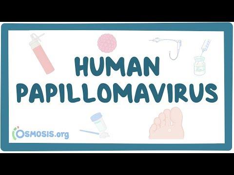 papilloma virus si vede dagli esami del sangue)