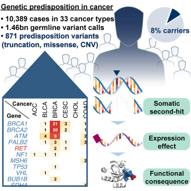cancer genetic disposition)