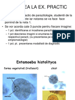 protozoar flagelat medicamente oxiuri copii
