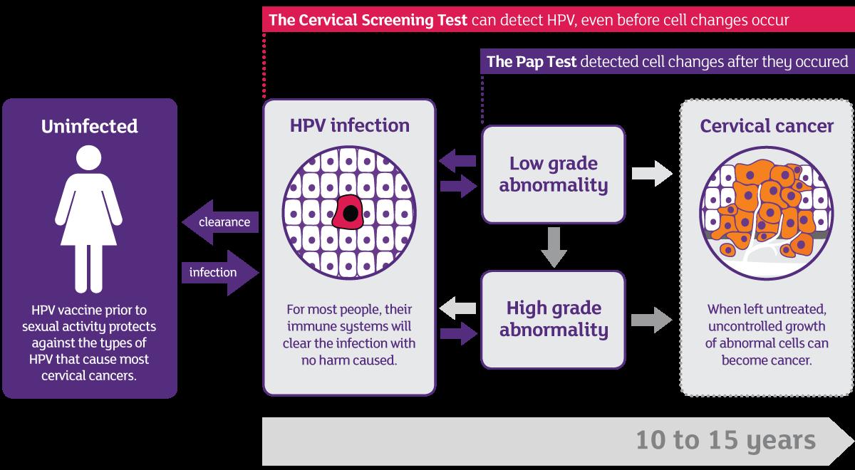 human papillomavirus causes in urdu