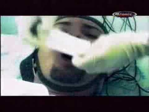 herpes da papilloma virus
