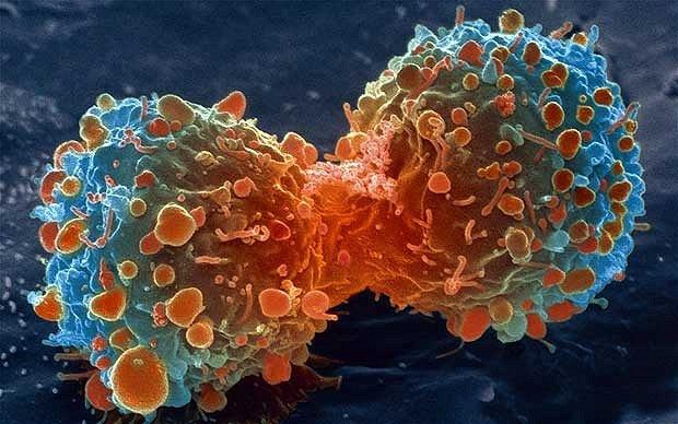 cancerul se poate vindeca