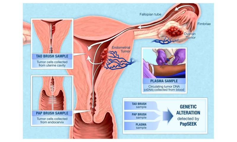 cervical cancer blood test)