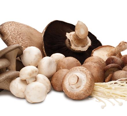 ciuperci calorii)