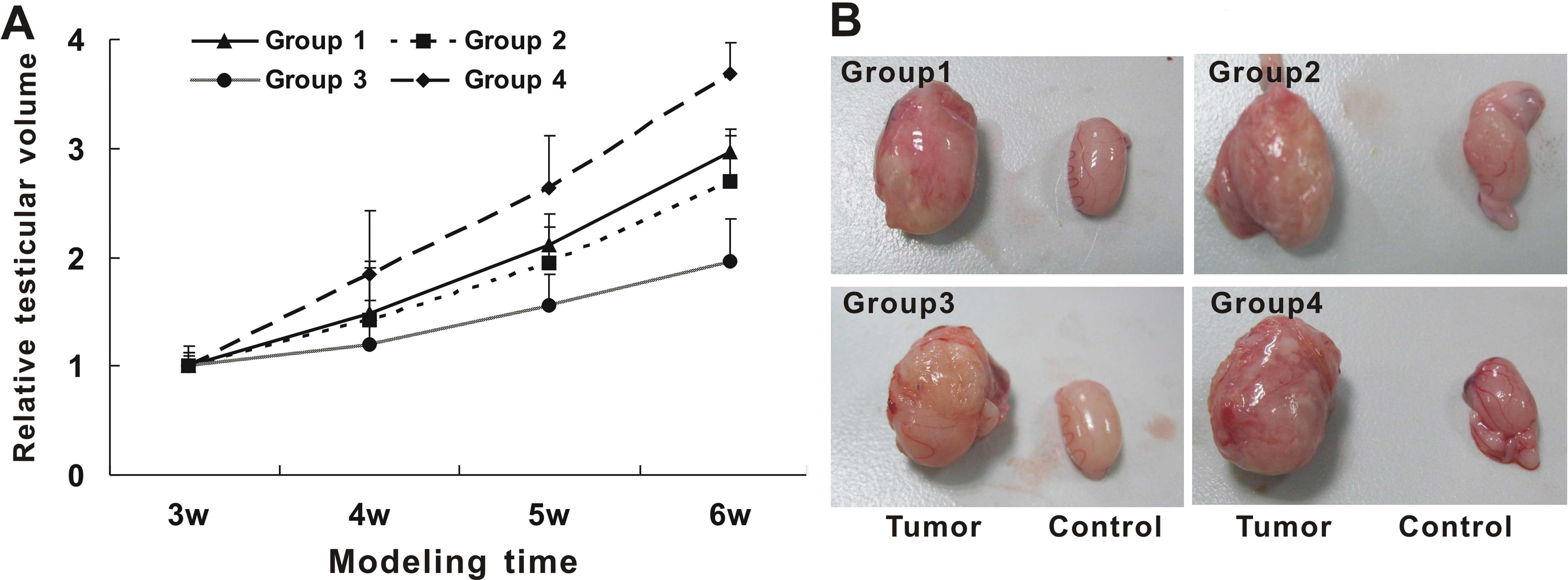 Cancerul si fertilitatea - Cancer