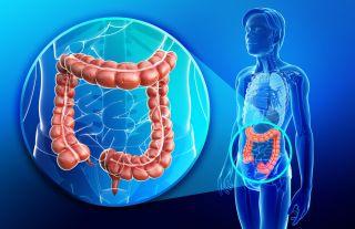 cancer intestinal function intraductal papilloma nhs