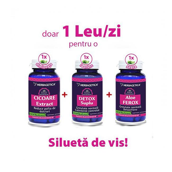 detoxifierea organismului plafar)