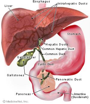 """Remediu cu sfeclă roşie pentru detoxifierea """"ficatului gras"""""""