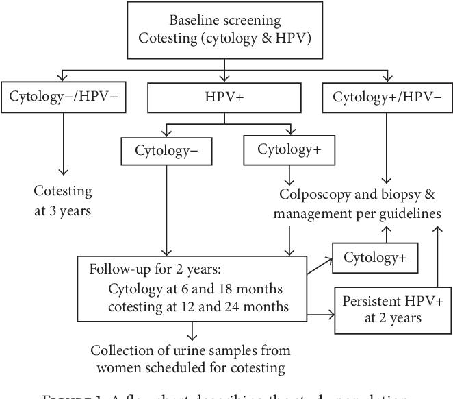 cervical high risk human papillomavirus dna test