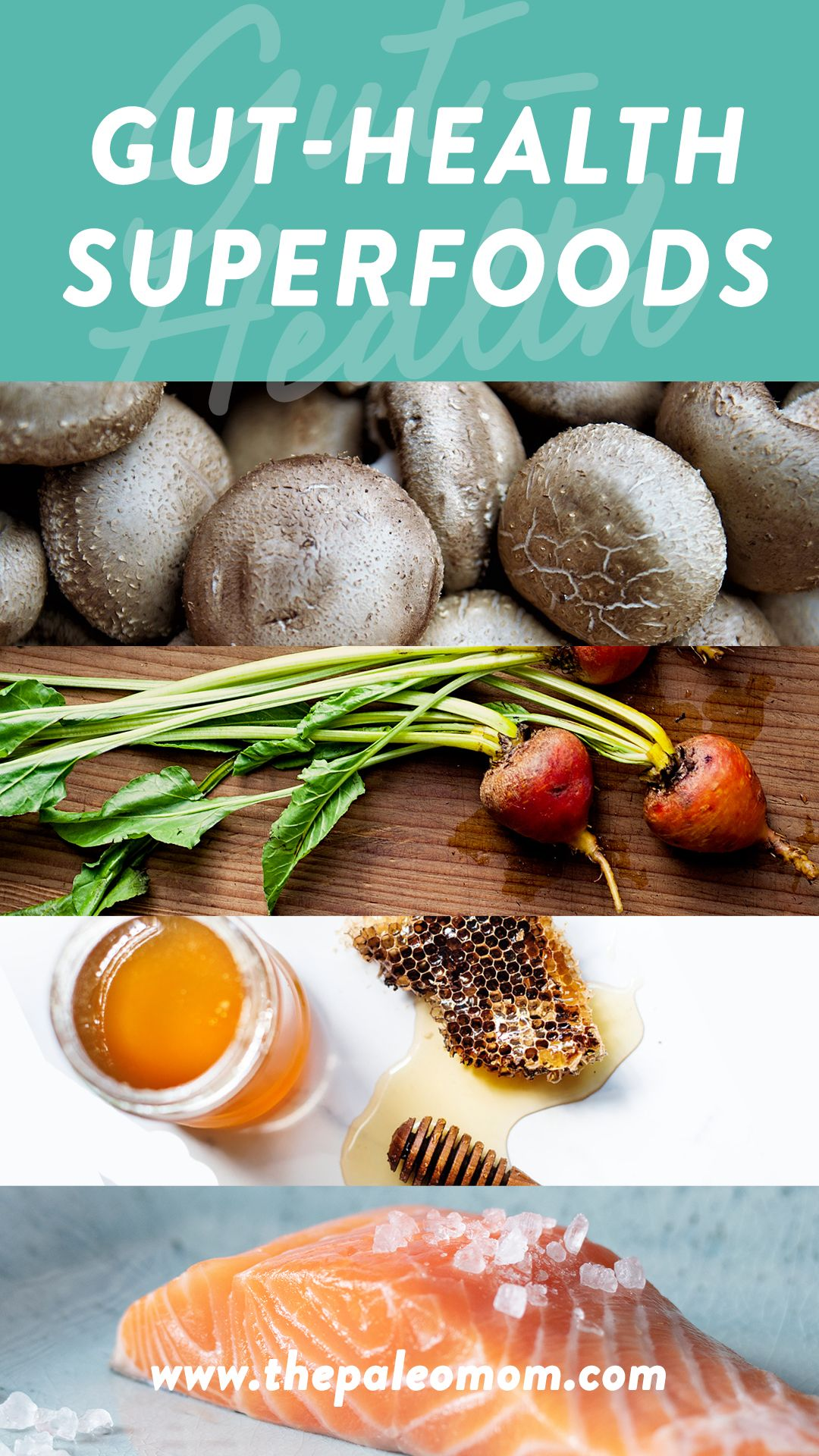 dysbiosis recipes