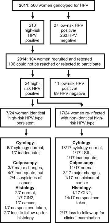 positive high risk human papillomavirus