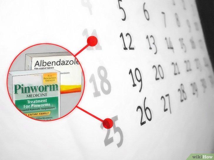 albendazol elimina oxiuros)