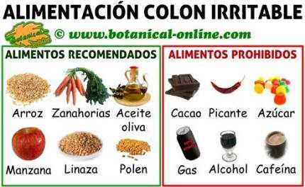 cancer colon que comer