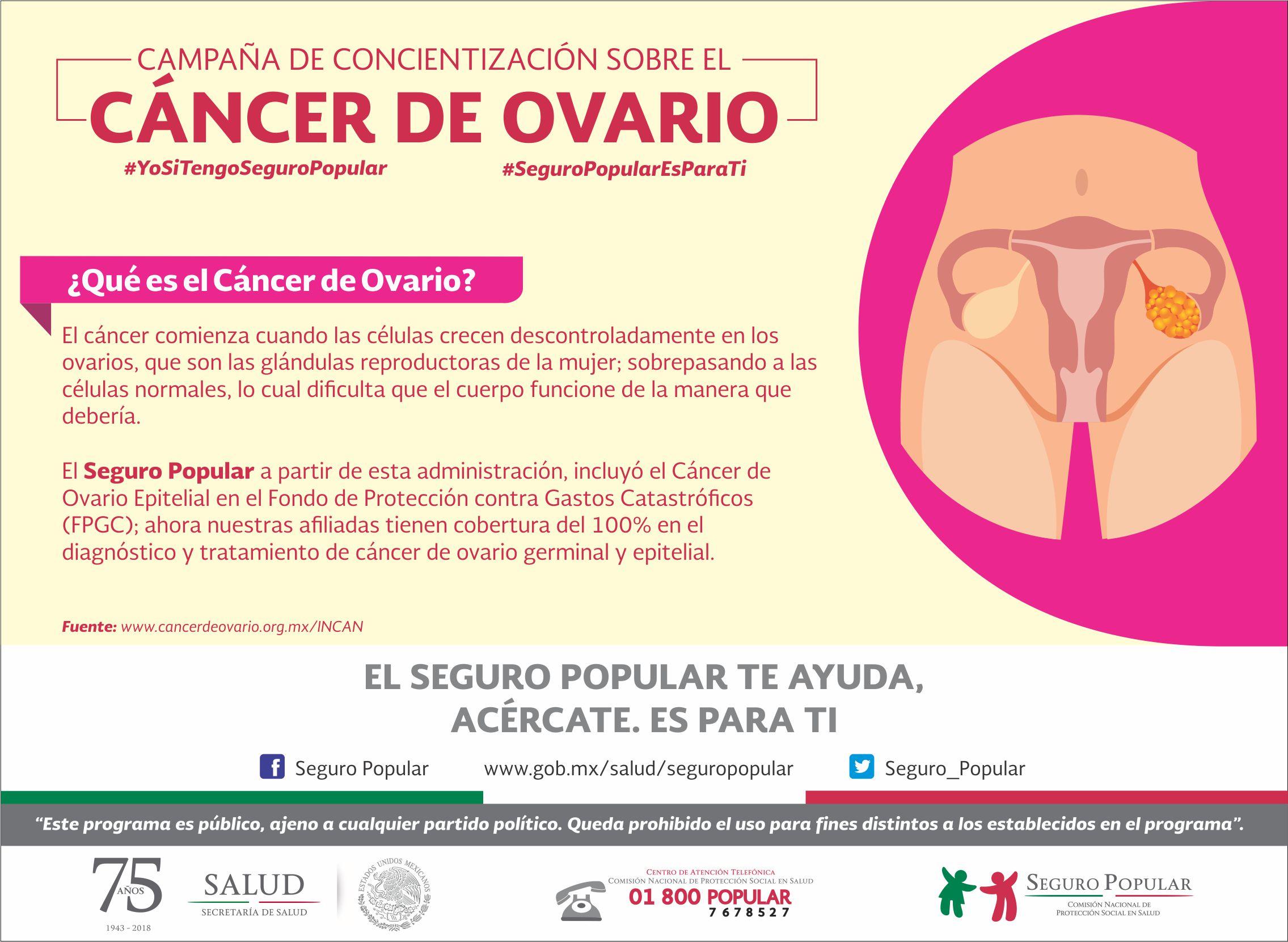 cancer epitelial ovarico