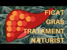 dezintoxicarea ficatului gras)