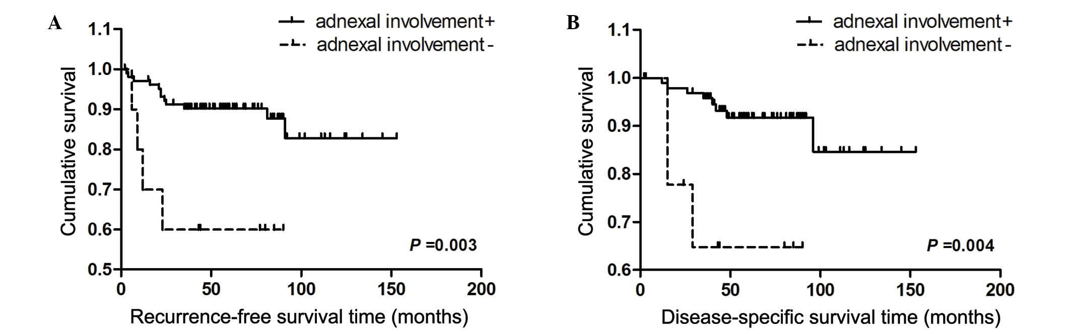 endometrial cancer recurrence rates)
