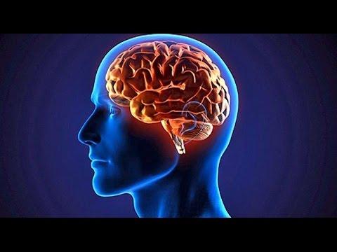 cancer cerebral como funciona