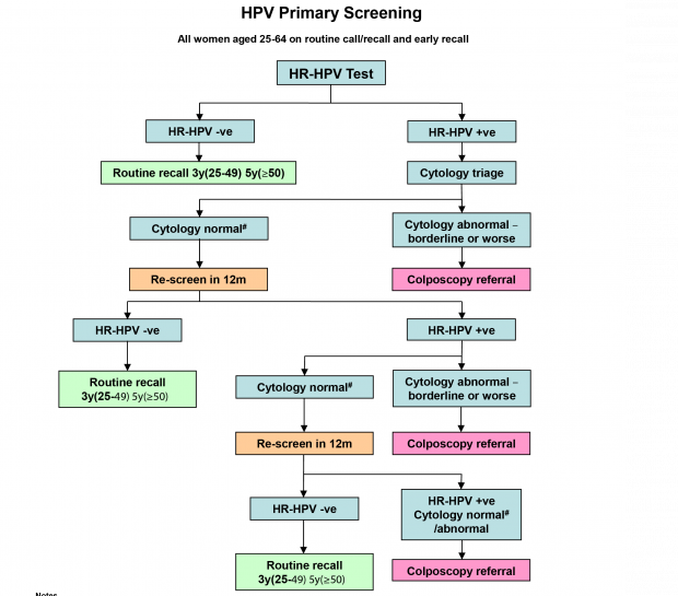 hpv high risk screen