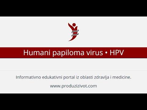 hpv virus sto je to