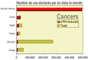 papillomavirus transmission combien de temps virus papiloma humano hombre portador