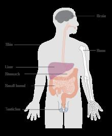 hodgkin cancer curable