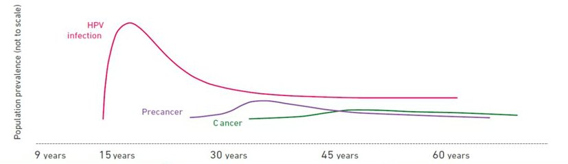hpv and herpes increase the risk of which type of cancer helminti la om