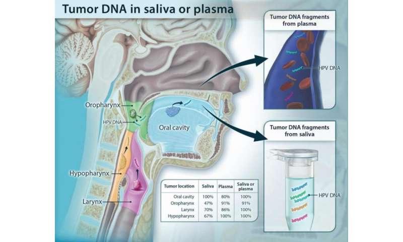 hpv brain tumor)