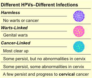 Condylomata (Genital Warts; HPV)