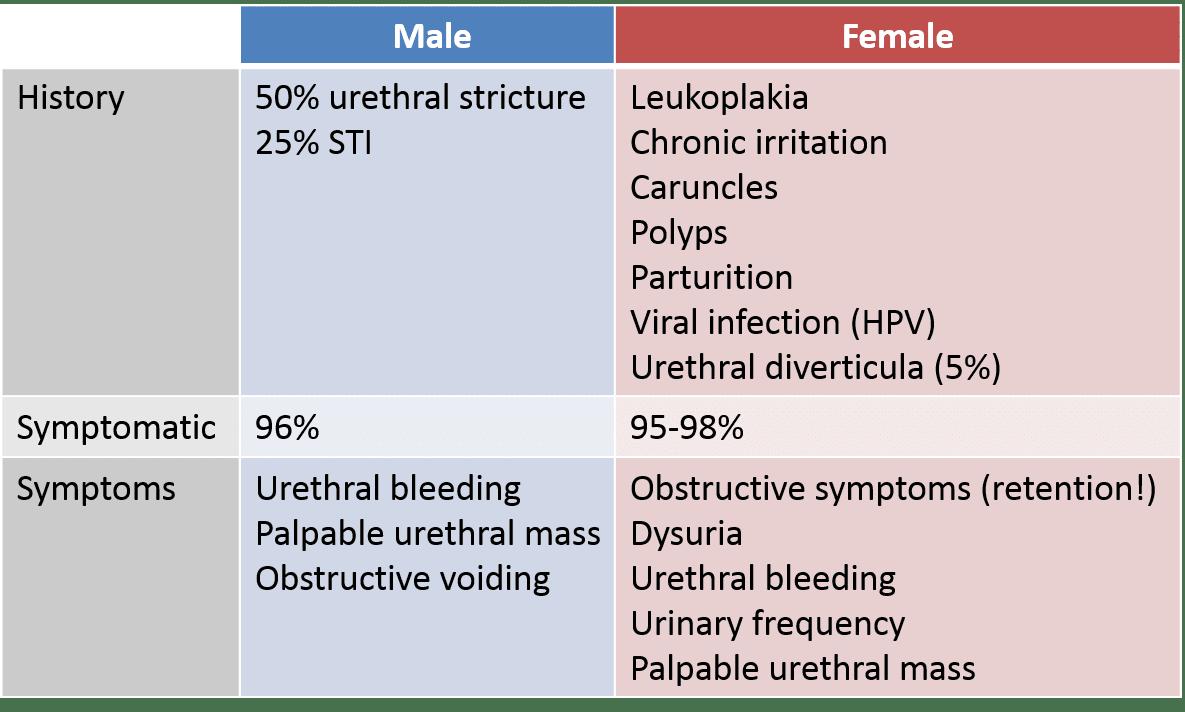 hpv urethral cancer virus del papiloma humano en hombres gpc