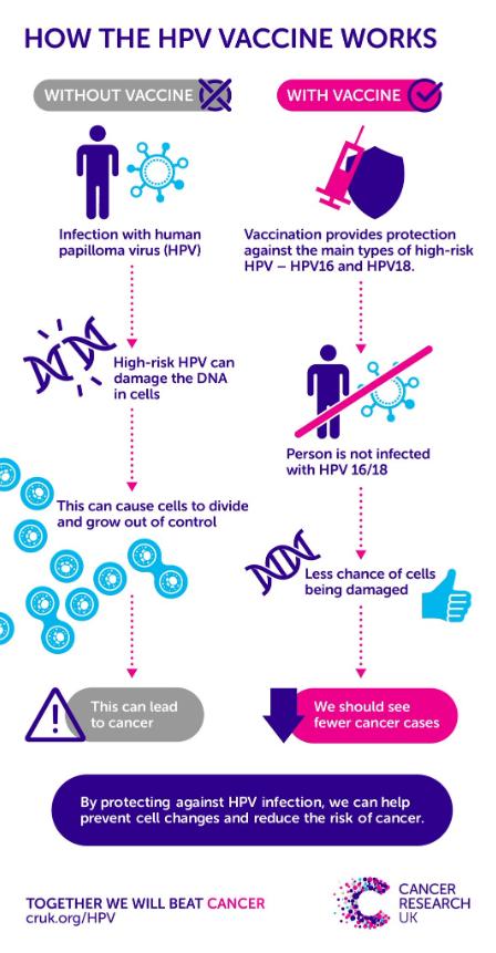 hpv virus vaccine uk)